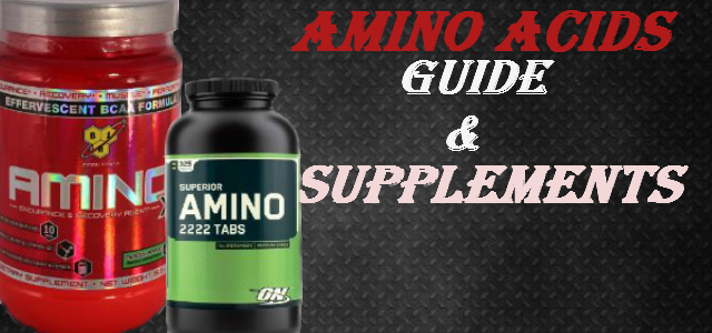 Amino Acids Guide and Supplements for Beginners