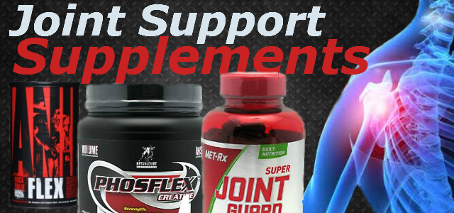 Best Joint Support Supplements 2013
