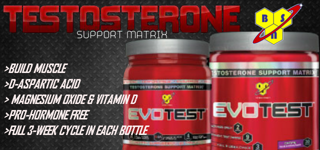 BSN Evotest Testosterone Support Review